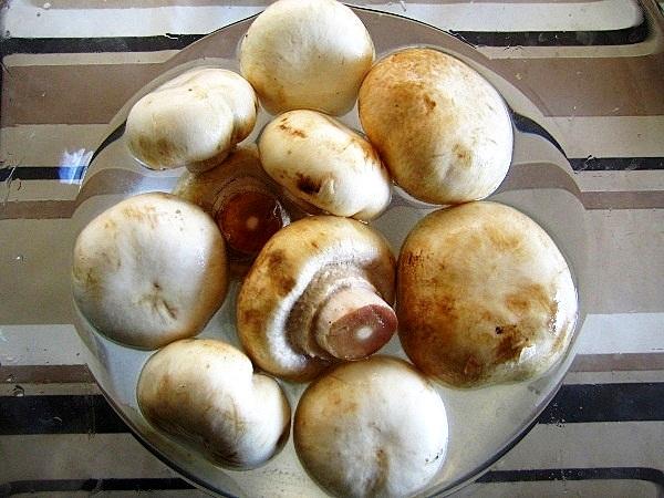 champiñones-rellenos (1)