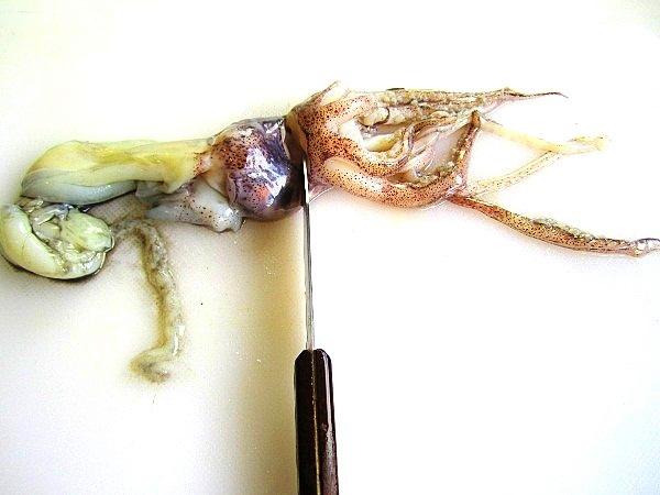 vol-au-vent-con-calamares (5)